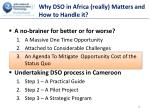 why dso in africa really matters and how to handle it2