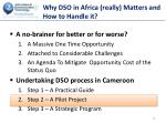 why dso in africa really matters and how to handle it4