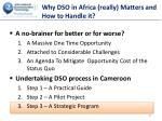 why dso in africa really matters and how to handle it5