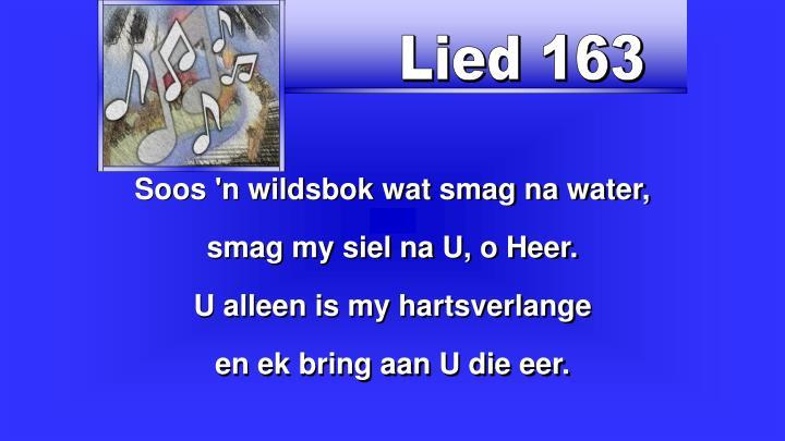 Lied 163