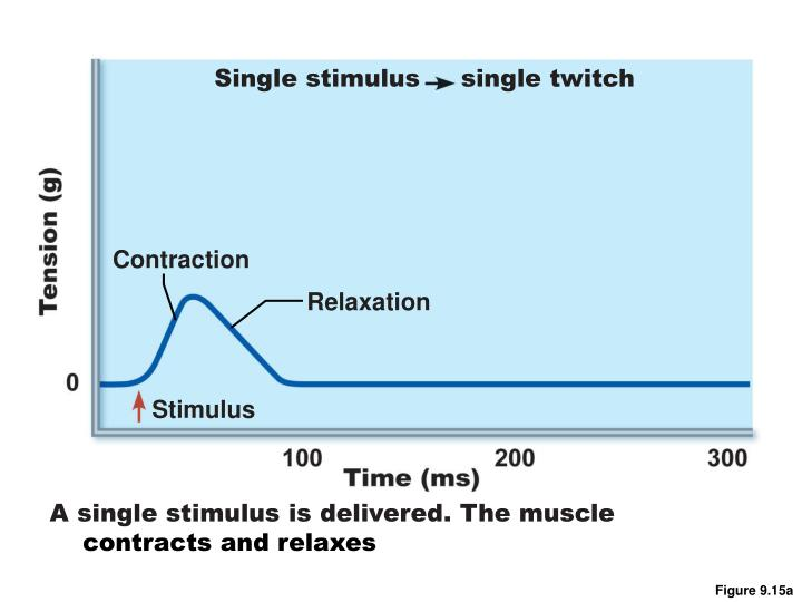 Single stimulus