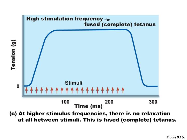 High stimulation frequency