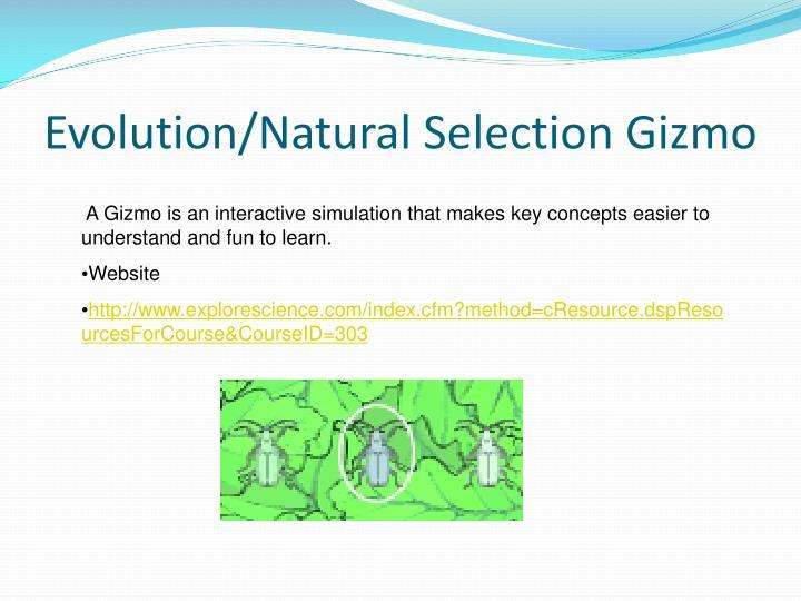 Evolution/Natural Selection Gizmo