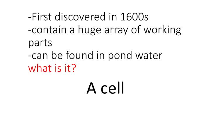 -First discovered in 1600s