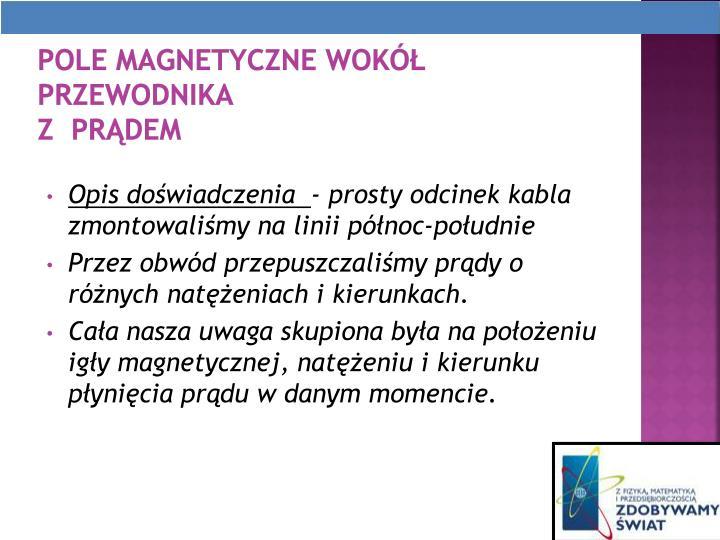 Pole magnetyczne wok przewodnika