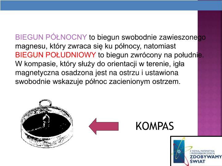BIEGUN PNOCNY