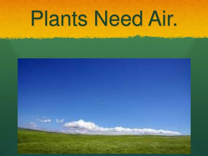 Plants Need Air.