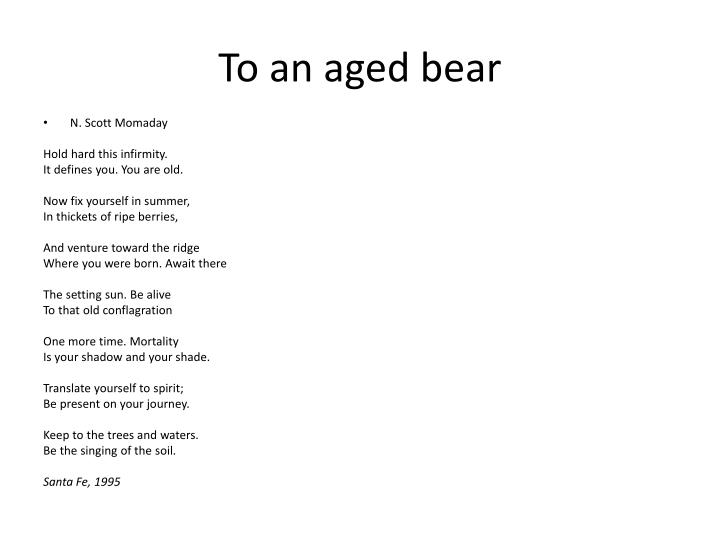 To an aged bear