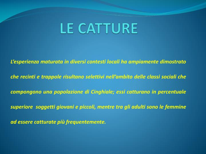 LE CATTURE