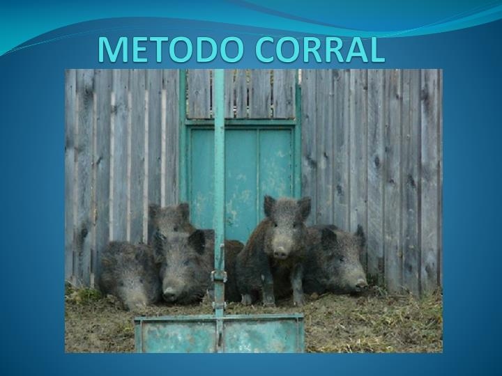 METODO CORRAL