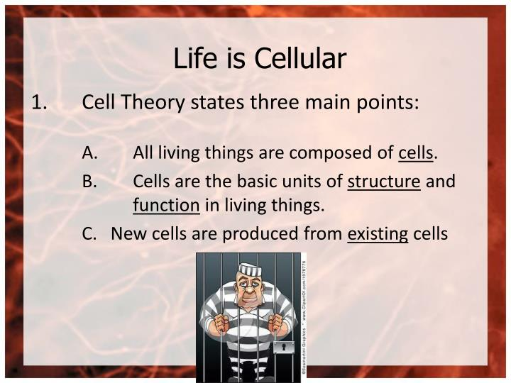 Life is Cellular
