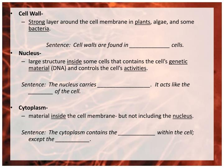 Cell Wall-