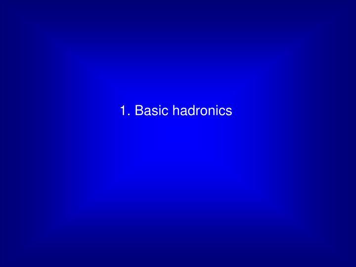 1. Basic hadronics