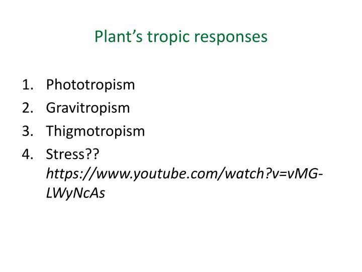 Plant's tropic responses