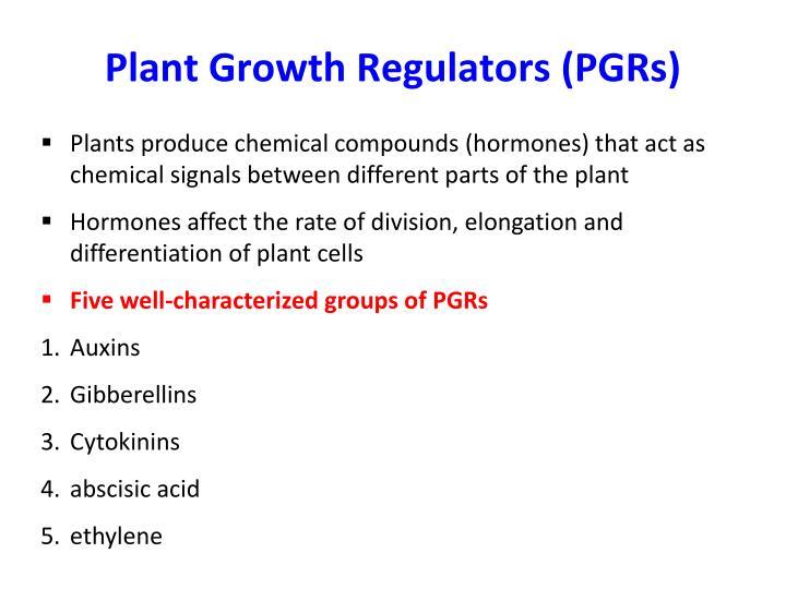 Plant Growth Regulators (PGRs)