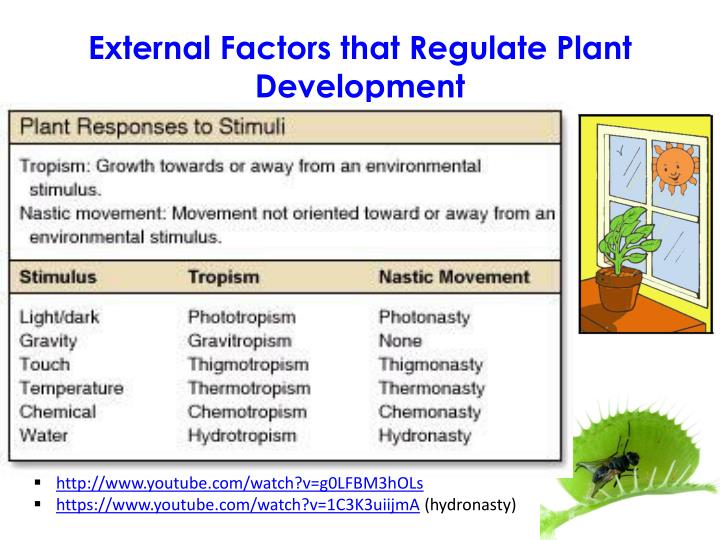 External Factors that Regulate Plant Development