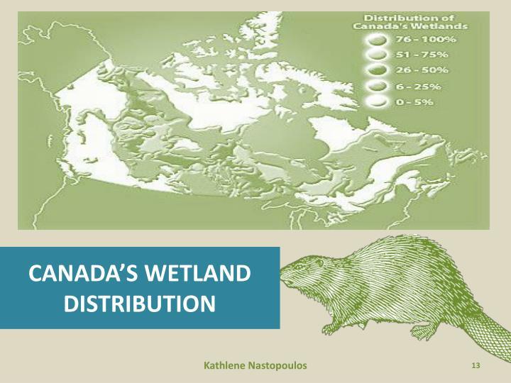 CANADA'S WETLAND
