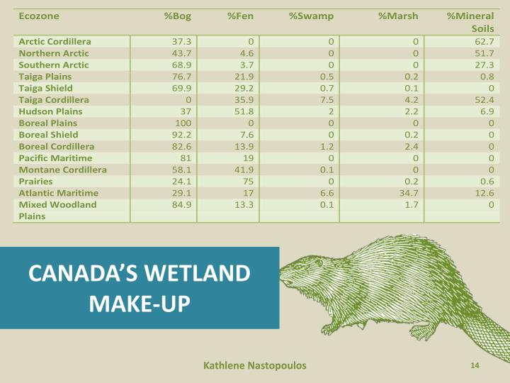 CANADA'S WETLAND MAKE-UP