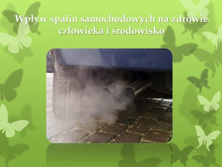 Wpływ spalin samochodowych na zdrowie człowieka i środowisko