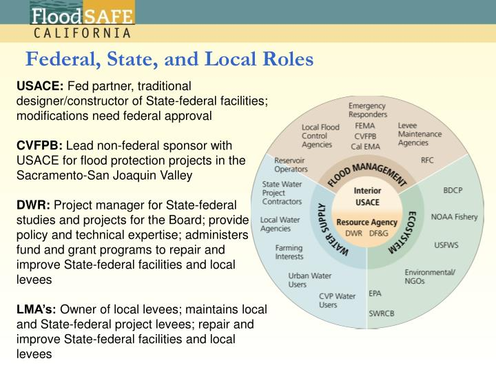 Federal, State, and Local Roles