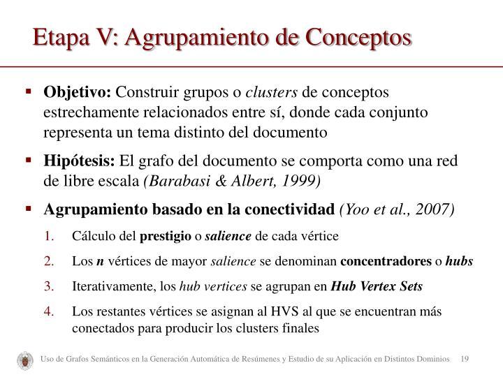 Etapa V: Agrupamiento de Conceptos