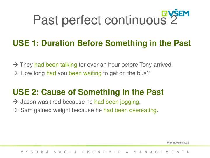 Past perfect continuous 2