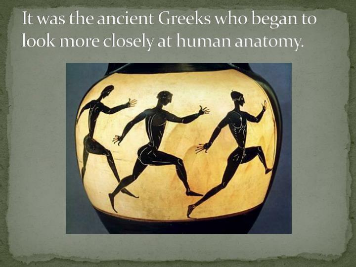 It was the ancient Greeks who began to look more closely at human anatomy.
