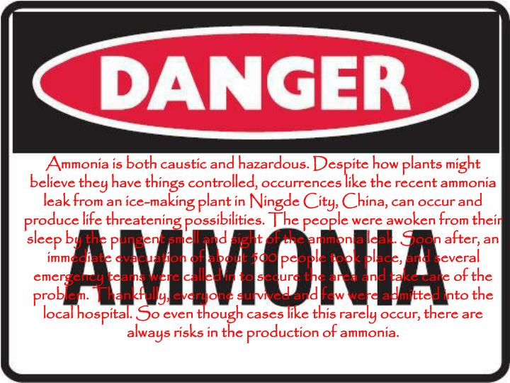 Ammonia is both caustic and hazardous. Despite how plants might believe they have things controlled, occurrences like the recent ammonia leak from an ice-making plant in Ningde City, China, can occur and produce life threatening possibilities. The people were awoken from their sleep by the pungent smell and sight of the ammonia leak. Soon after, an immediate evacuation of about 500 people took place, and several emergency teams were called in to secure the area and take care of the problem. Thankfully, everyone survived and few were admitted into the local hospital. So even though cases like this rarely occur, there are always risks in the production of ammonia.