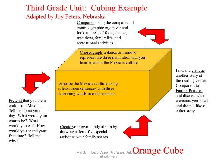 Third Grade Unit:  Cubing Example