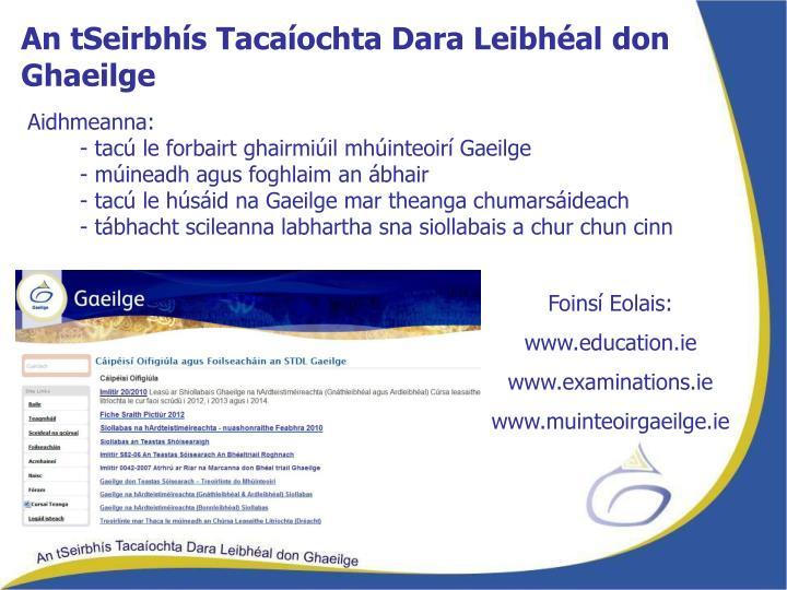 An tSeirbhís Tacaíochta Dara Leibhéal don Ghaeilge