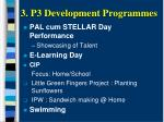 3 p3 development programmes1