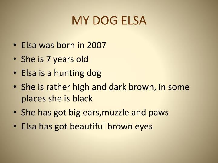 MY DOG ELSA