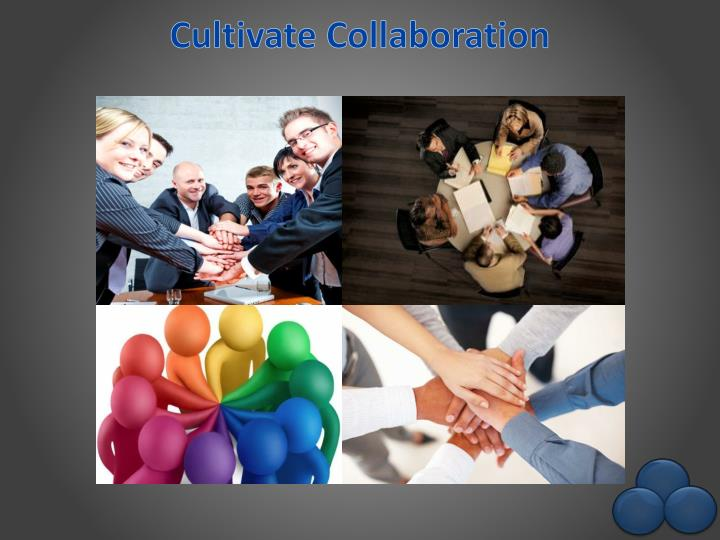 Cultivate Collaboration
