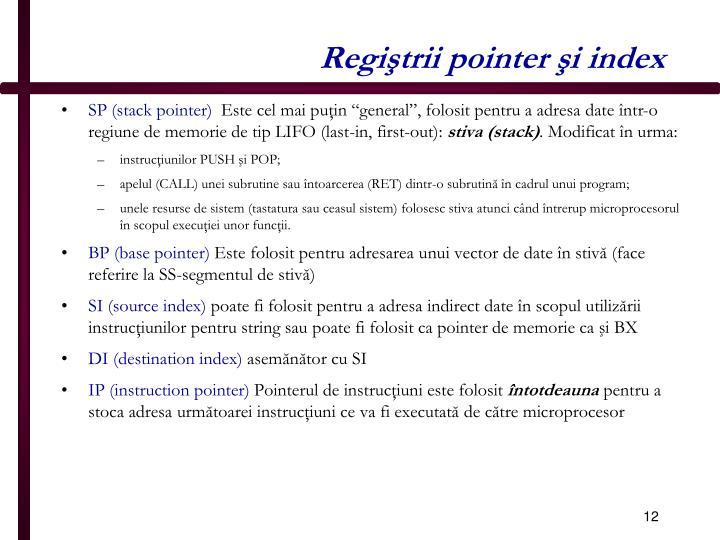 Regiştrii pointer şi index