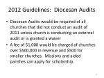 2012 guidelines diocesan audits