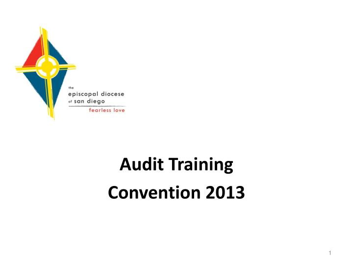 Audit training convention 2013