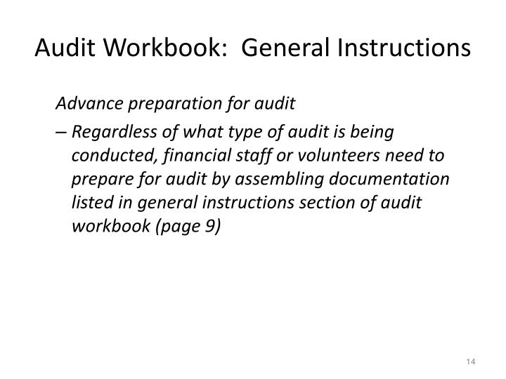 Audit Workbook:  General Instructions