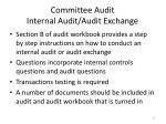 committee audit internal audit audit exchange