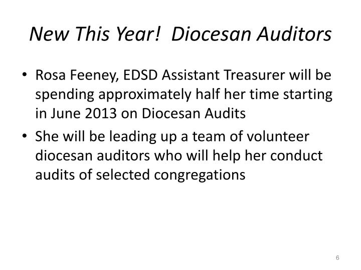 New This Year!  Diocesan Auditors