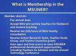 what is membership in the msuner