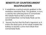 benefits of countercurrent multiplication