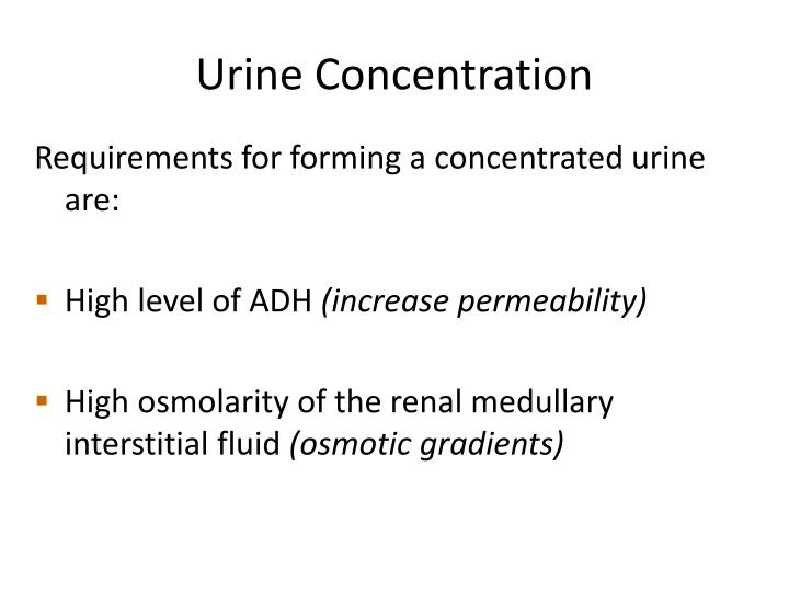 Urine Concentration
