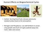 human effects on biogeochemical cycles