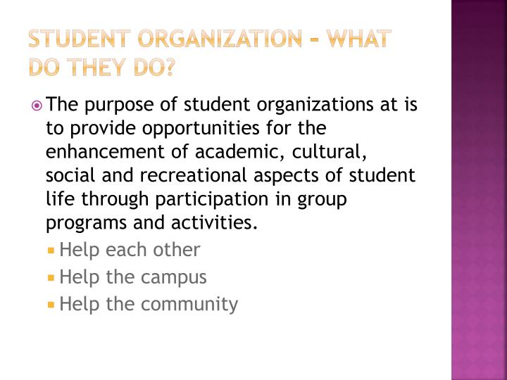Student Organization – What do They DO?