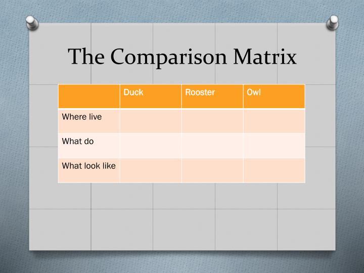The Comparison Matrix
