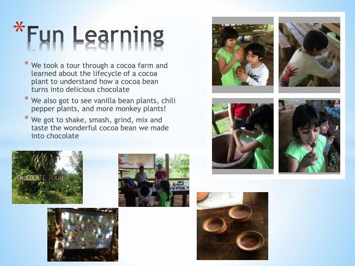 We took a tour through a cocoa