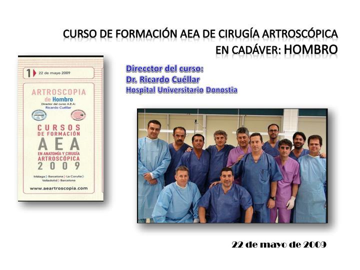 Curso de formación AEA de Cirugía Artroscópica