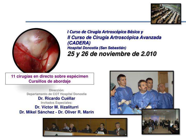 I Curso de Cirugía Artroscópica Básica y