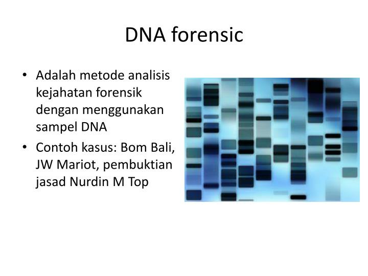 Dna forensic