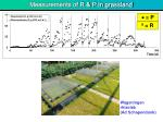 measurements of r p in grassland